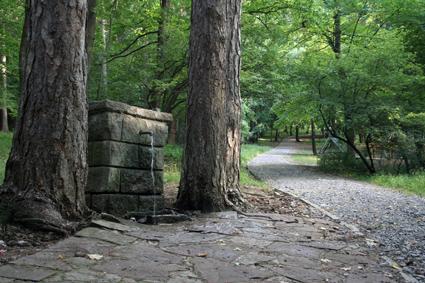 Изворна чешма в парк Княжевска борова гора. Снимка Н. Трейман 2008 г.